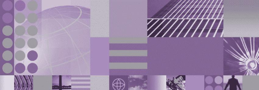 ibm-websphere-dynamic-process-edition