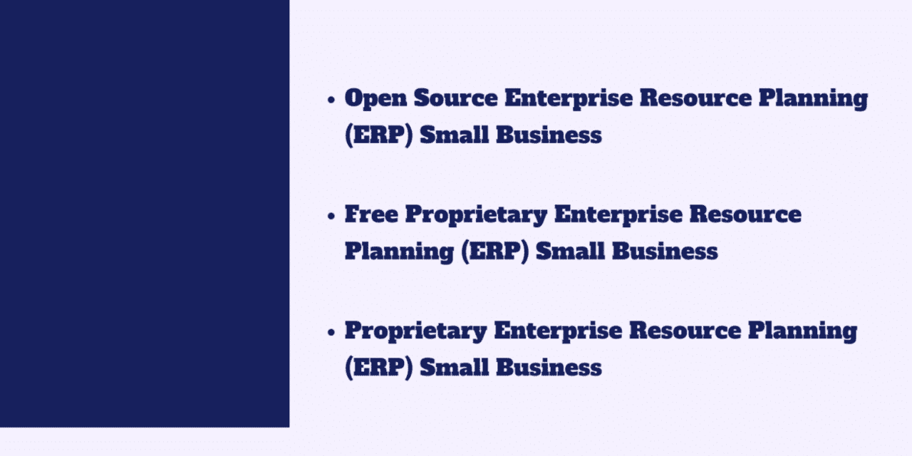 Identifying Which Type of Enterprise Resource Planning (ERP) Software is right for your Small Business