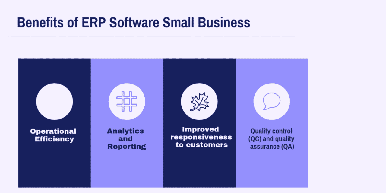 What are the Benefits of ERP Software Small Business