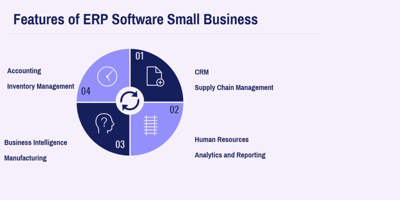What are the Essential Features of ERP Software Small Business