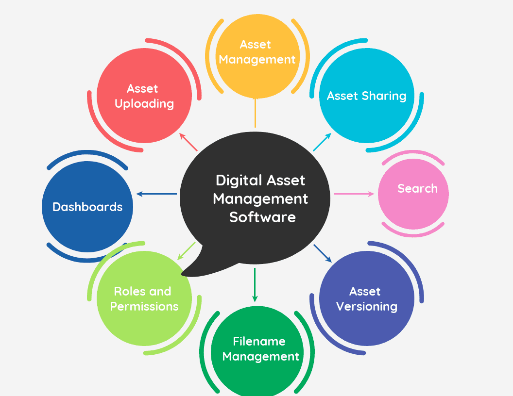 best digital asset management software review