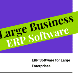 ERP Software for Large Enterprises