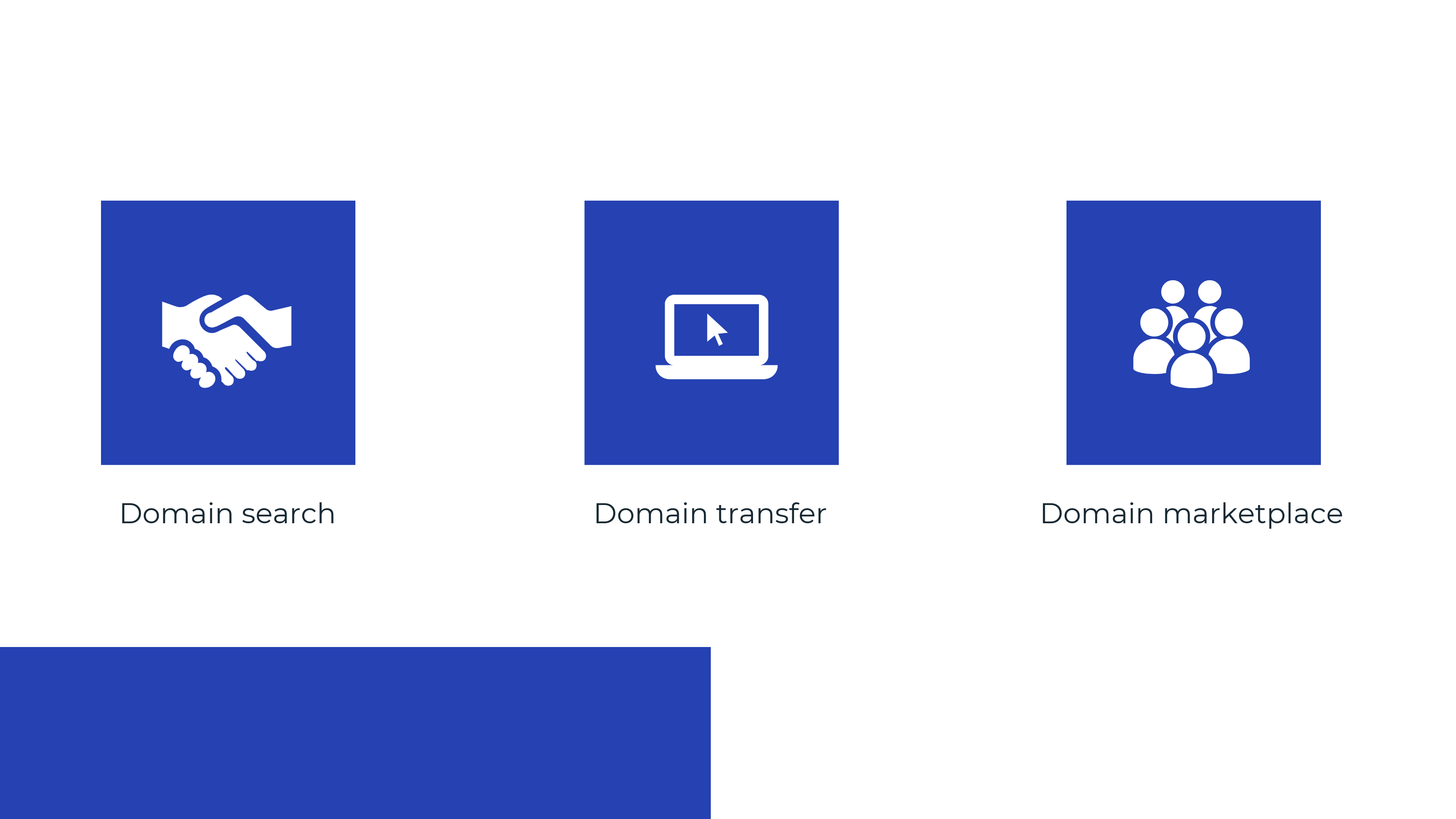 Domain Registration Providers Features
