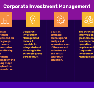 What is Corporate Investment Management, Key issues and Benefits